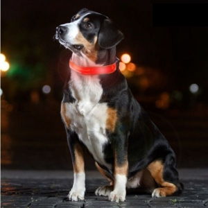 My Pet EZ LED Hundehalsband