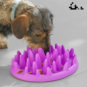 My Pet Ez Slow Food Bowl interaktiver Fressnapf